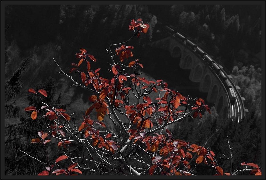 Roter Oktober III