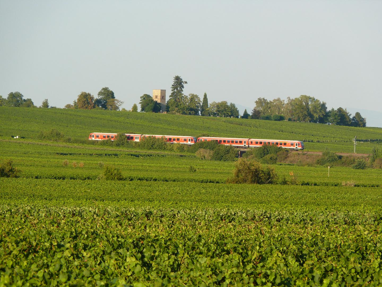 Roter Zug im grünen Meer