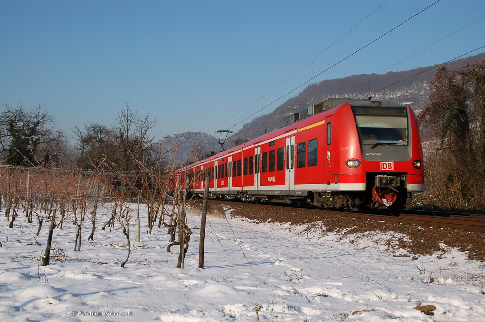Roterfleck im Schnee