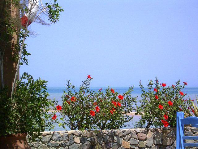 Rotes Meer Ägypten.