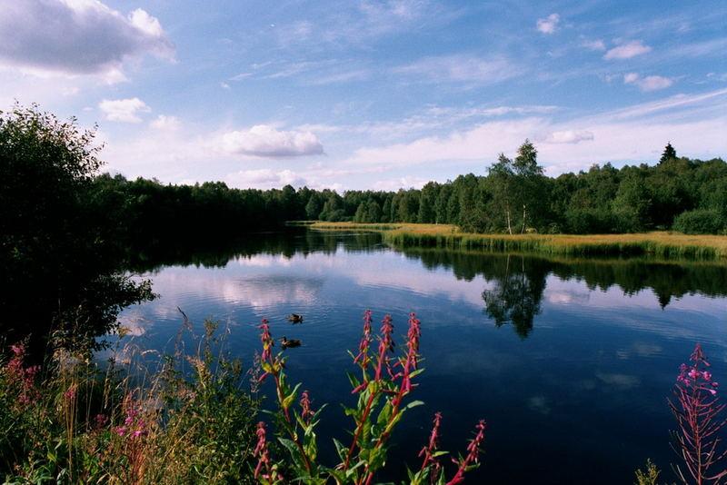 Rotes Moor im Naturpark Rhön