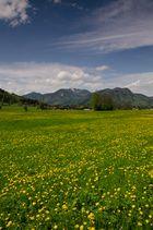 Rottach-Unterwallberg