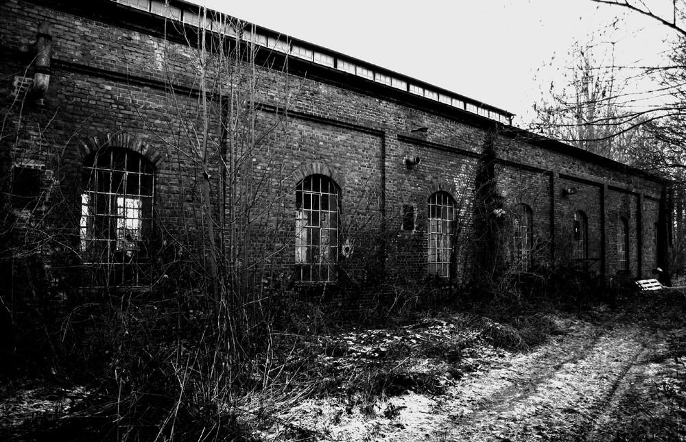 rotten factory