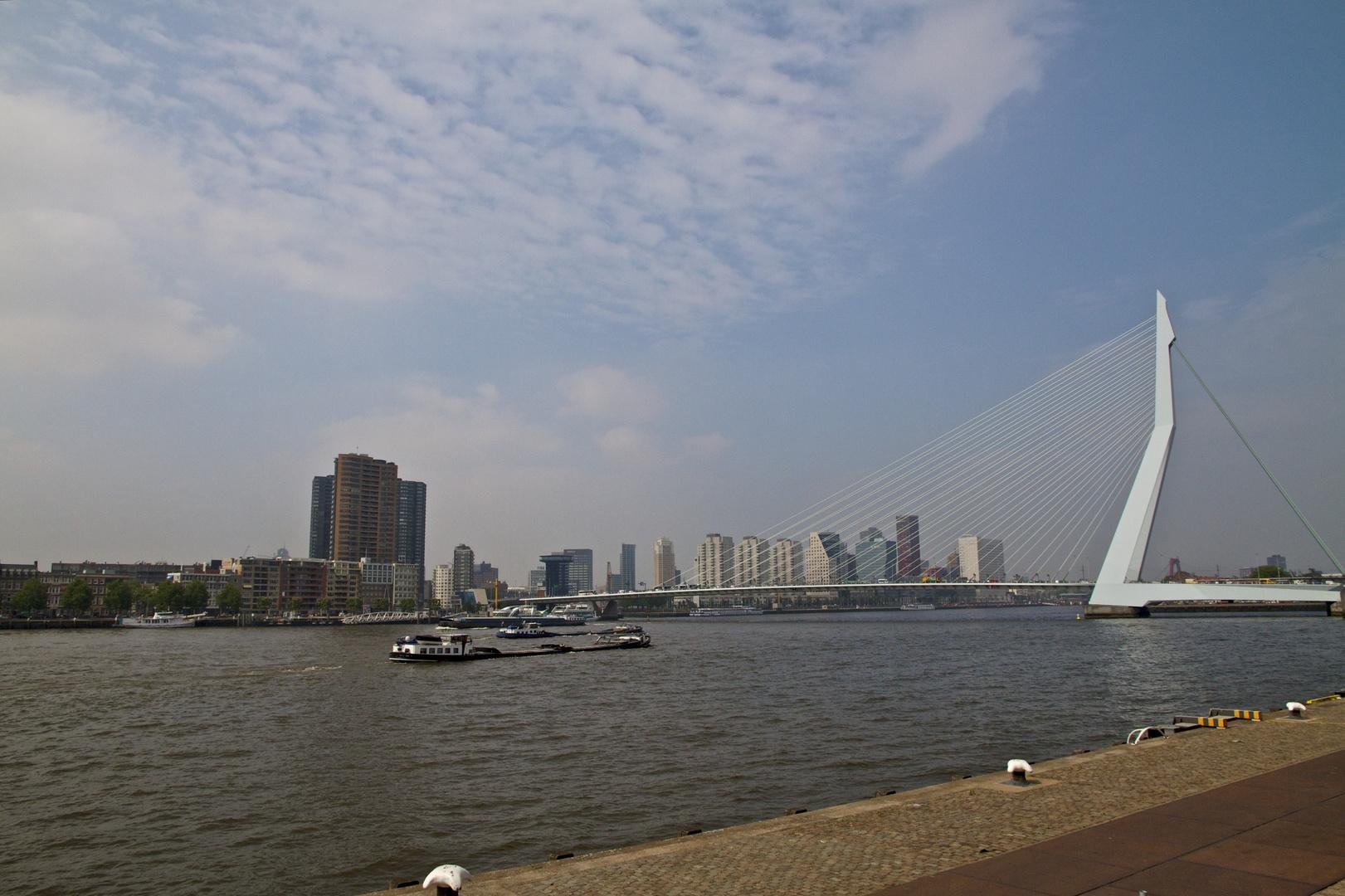 Rotterdam City Harbour