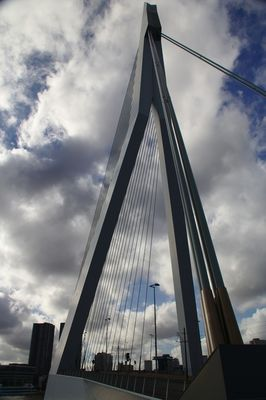 Rotterdam – Erasmusbrug