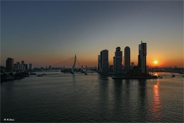 Rotterdam erwacht