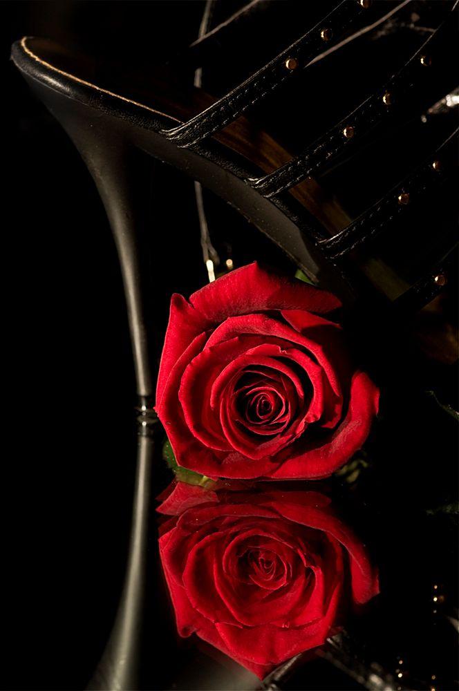 Rouge passion von Eric Chalvet