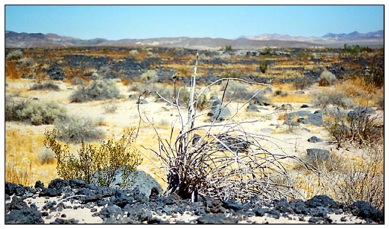 Route 66 - Lavafelder und gleissende Sonne, California