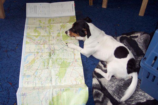 Routenplanung für's Gassigehen