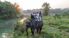 Royal Chitwan National Park Terai Nepal