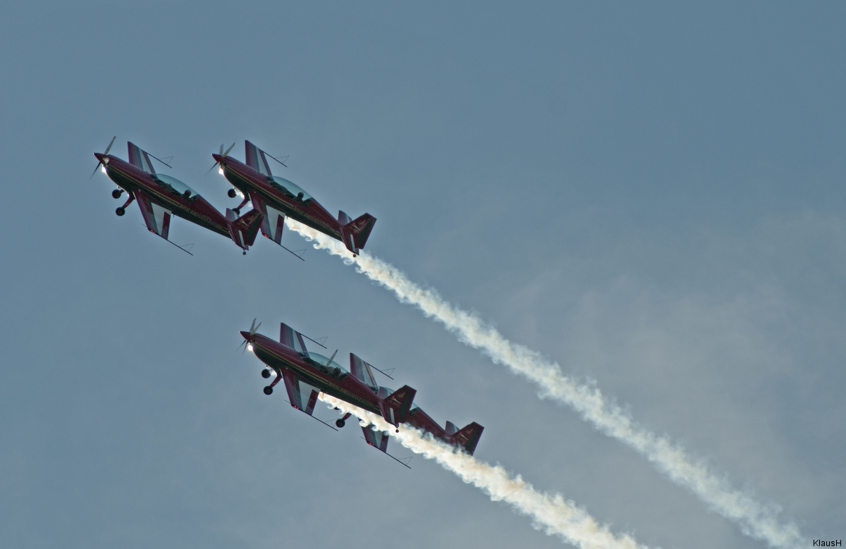 ~ Royal Jordanian Falcons I ~