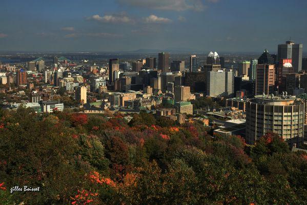 royale Montréal