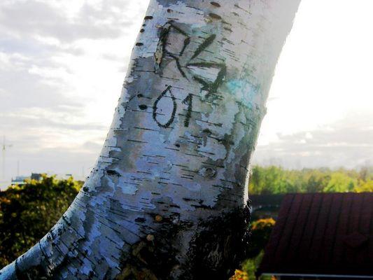 RS 01