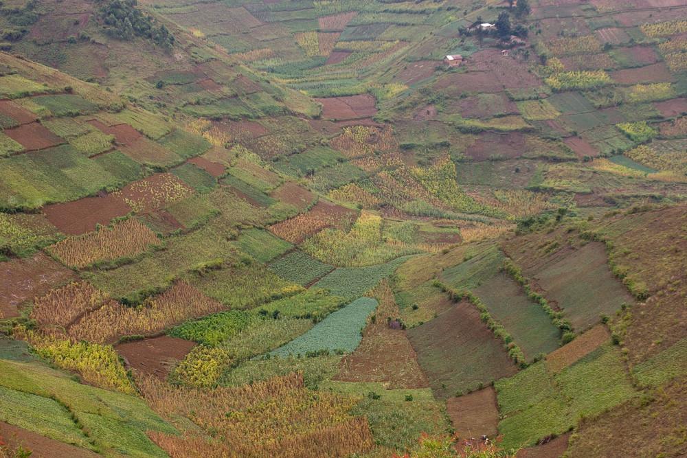 Ruanda - Kulturlandschaft (1)