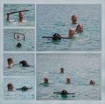 Rudelführer - auch im Wasser