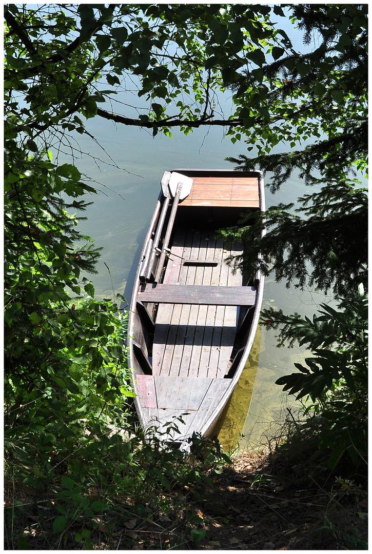 Ruderboot am Waldsee