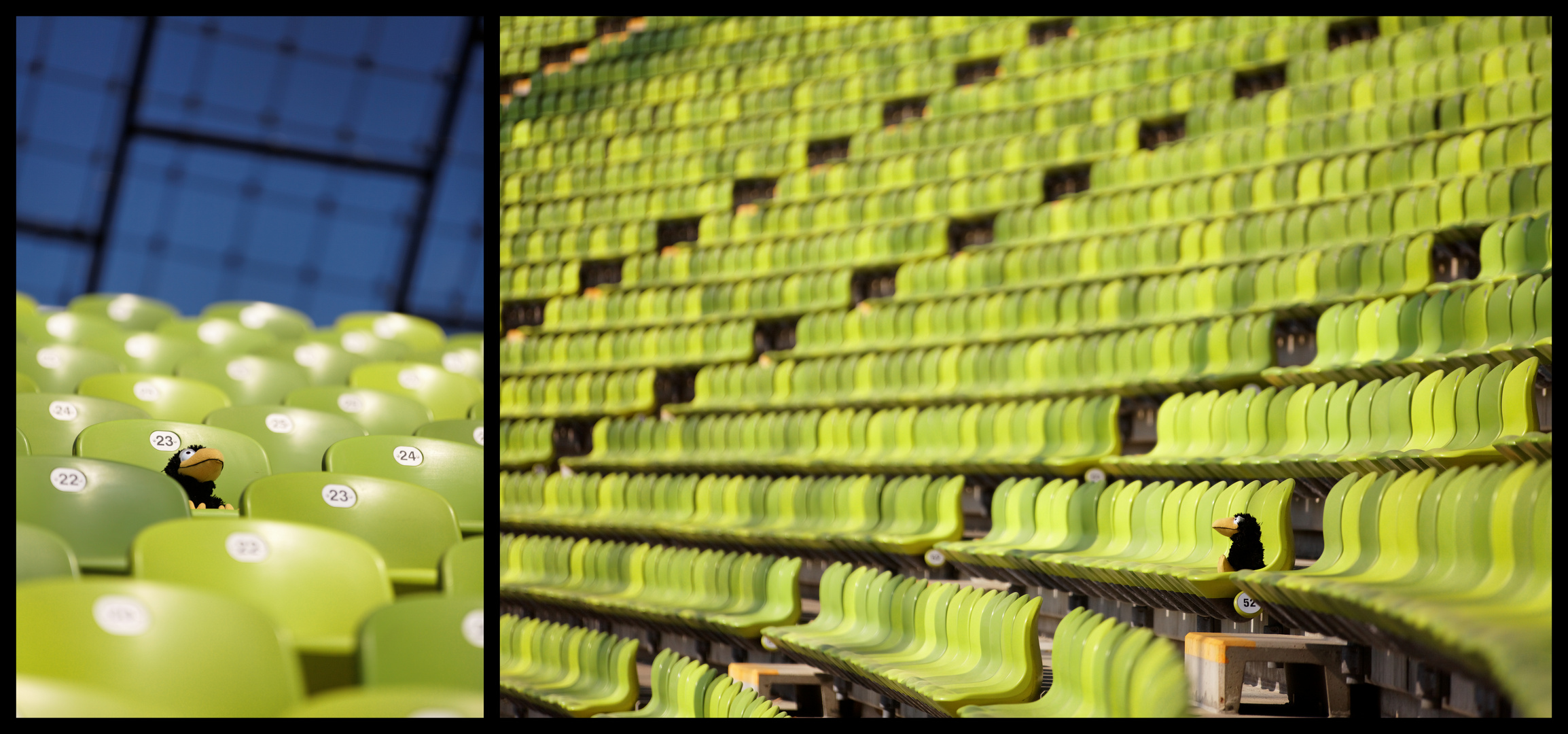 ...Rudi im Olympiastadion...