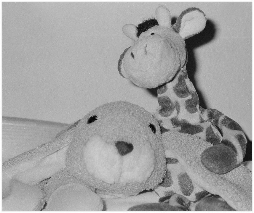 Rudi und Marlene