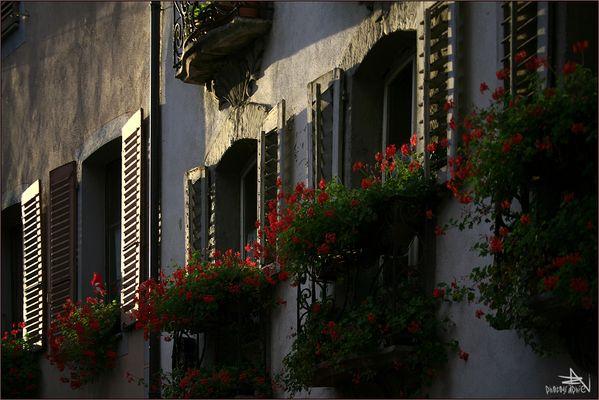 Rue de Conthey