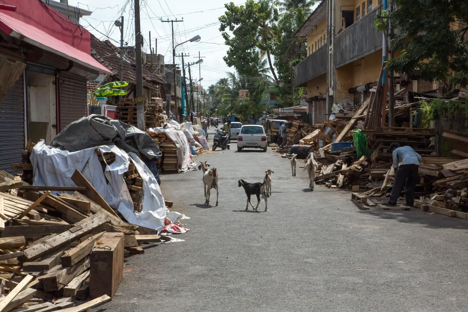 Rue des récupérateurs de bois à Fort Cochin