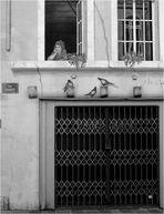 Rue Lambert, trompe l'oeil.
