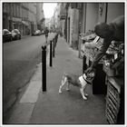 rue Pigalle