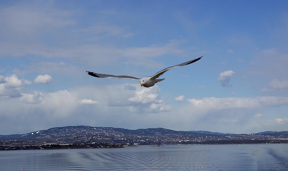 Rückfahrt von Oslo nach Kiel
