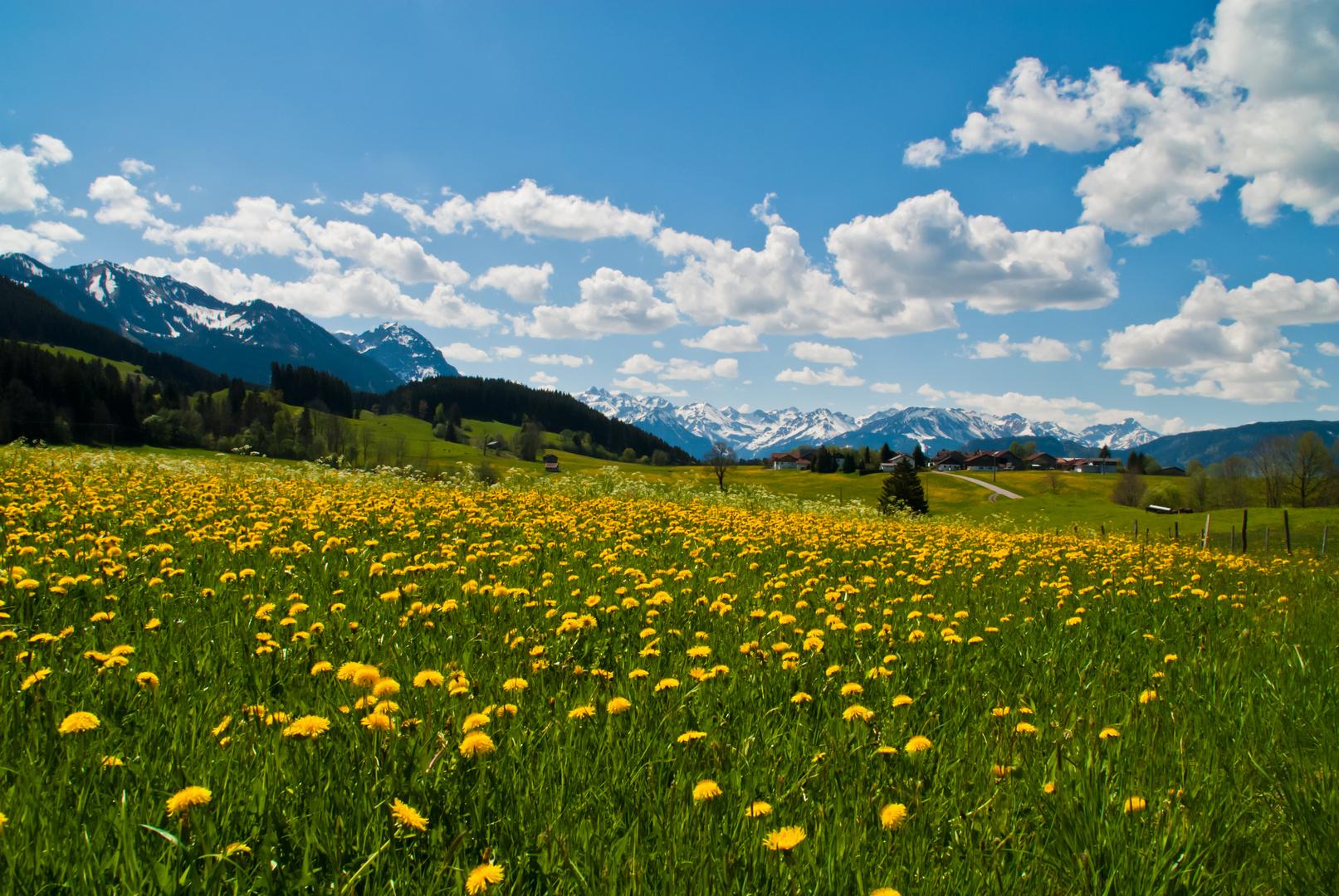 Rückkehr des Frühlings