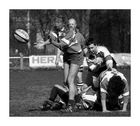 Rugby 208271