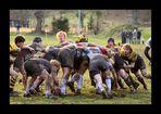 Rugby coq mosan