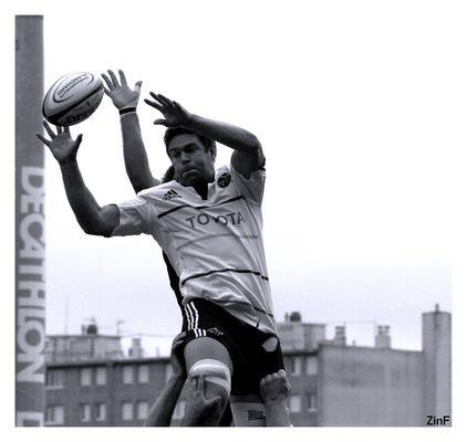 rugbyman irlandais à La Rochelle