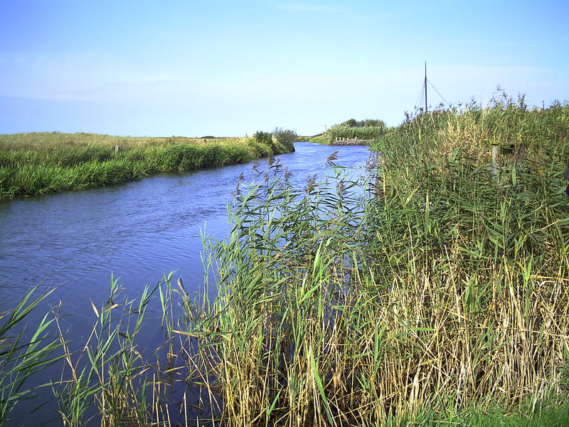 Ruhe am Fluß