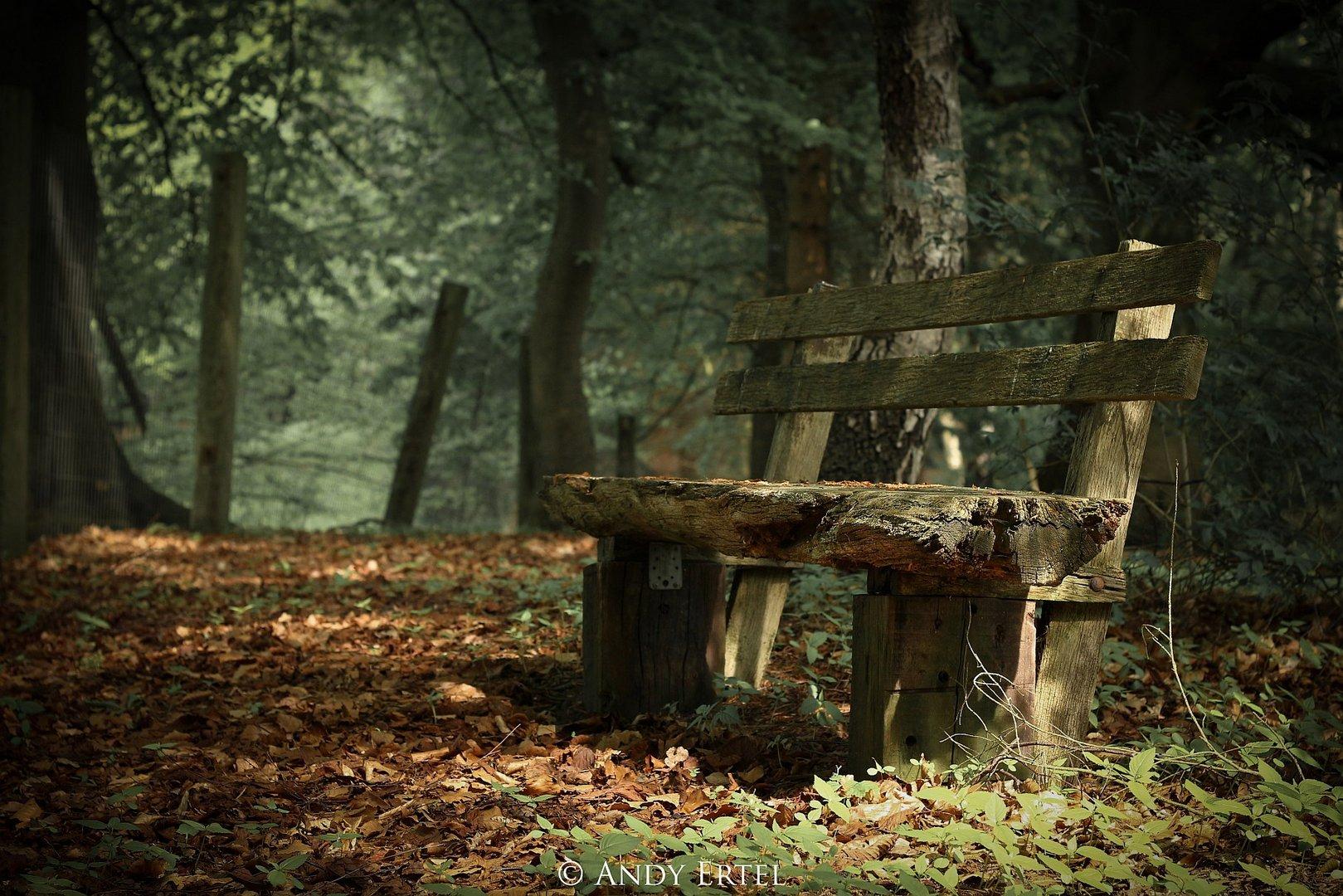 Ruhe - die Seele der Natur