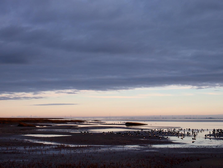 Ruhe im Wattenmeer