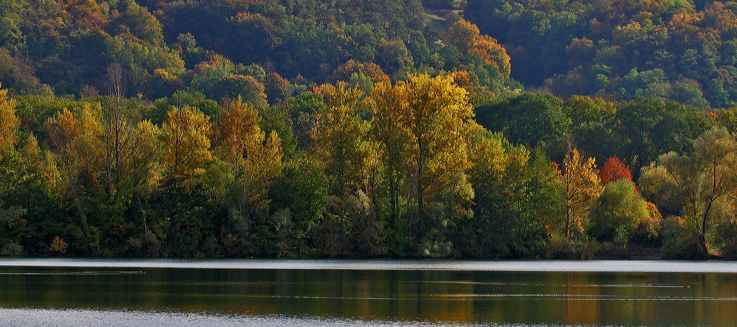 Ruhe nach dem Herbststurm...
