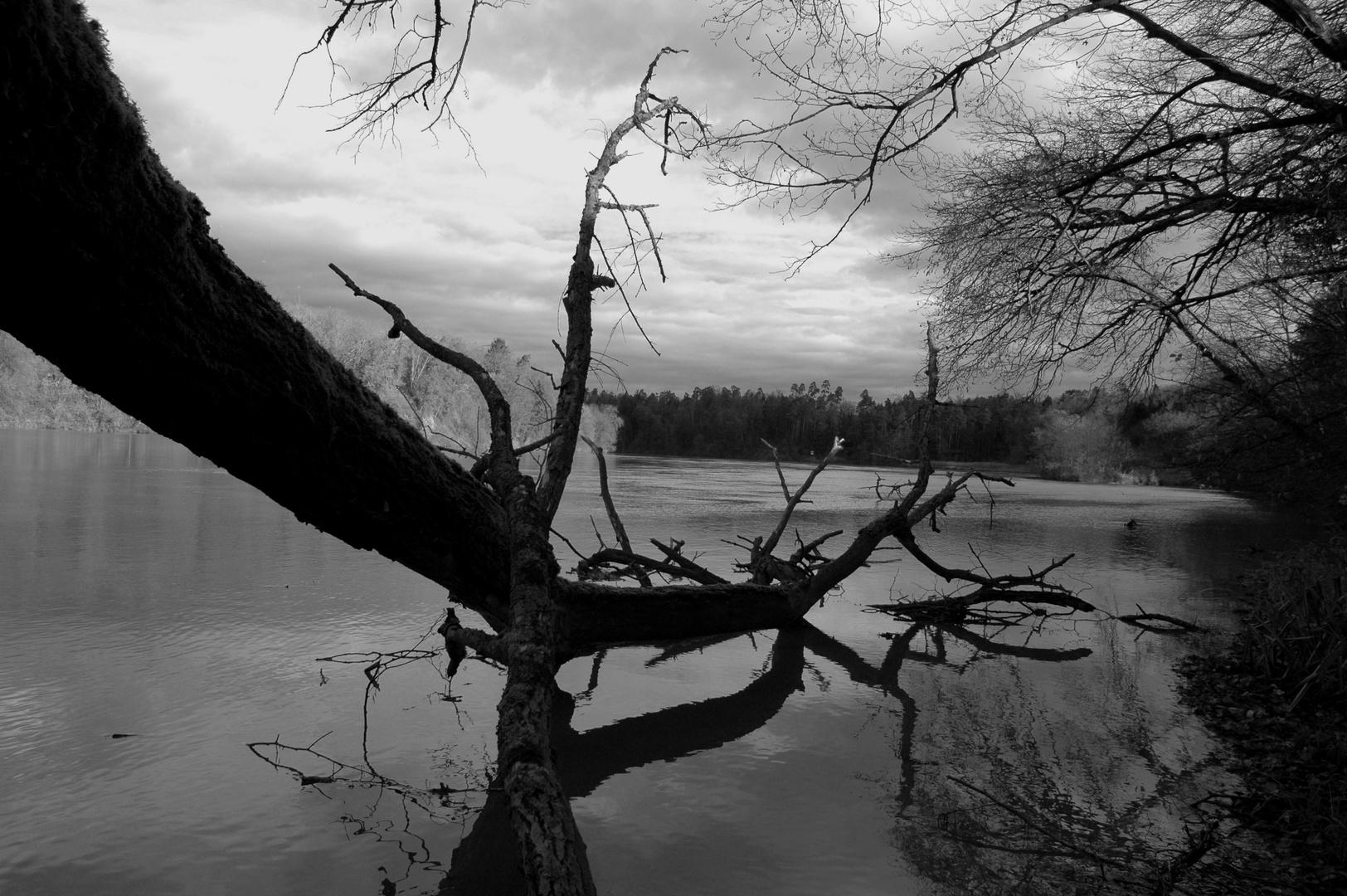 Ruhe und Fluss