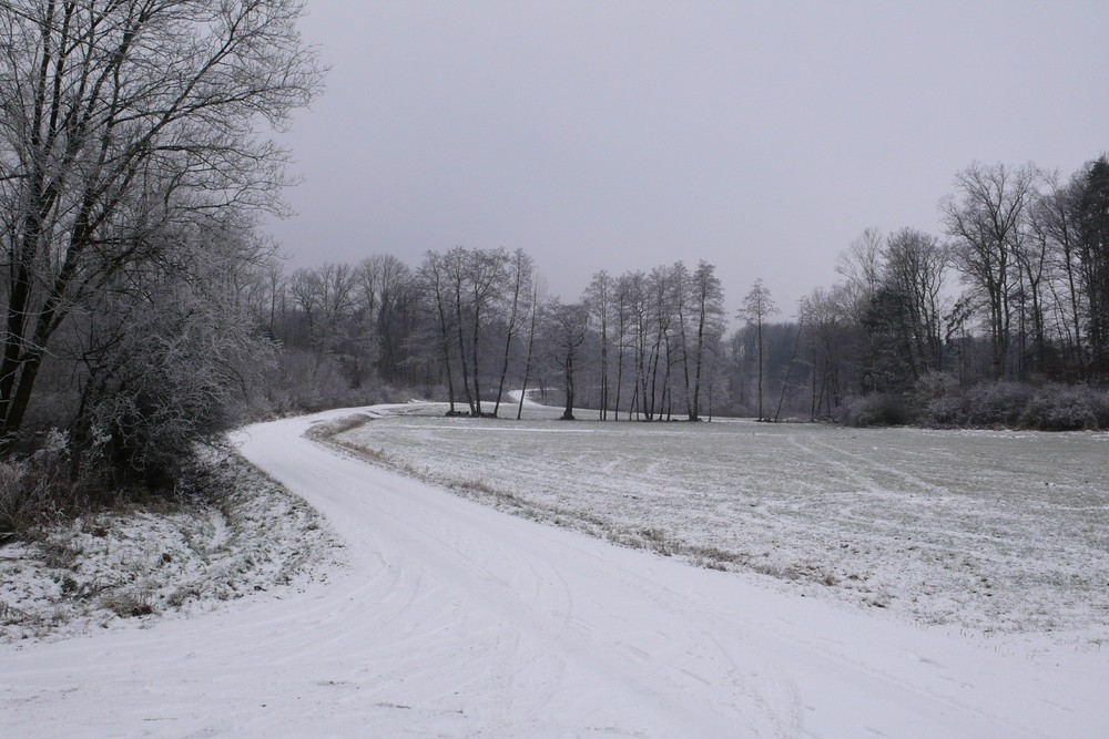 ruhige Winterlandschaft