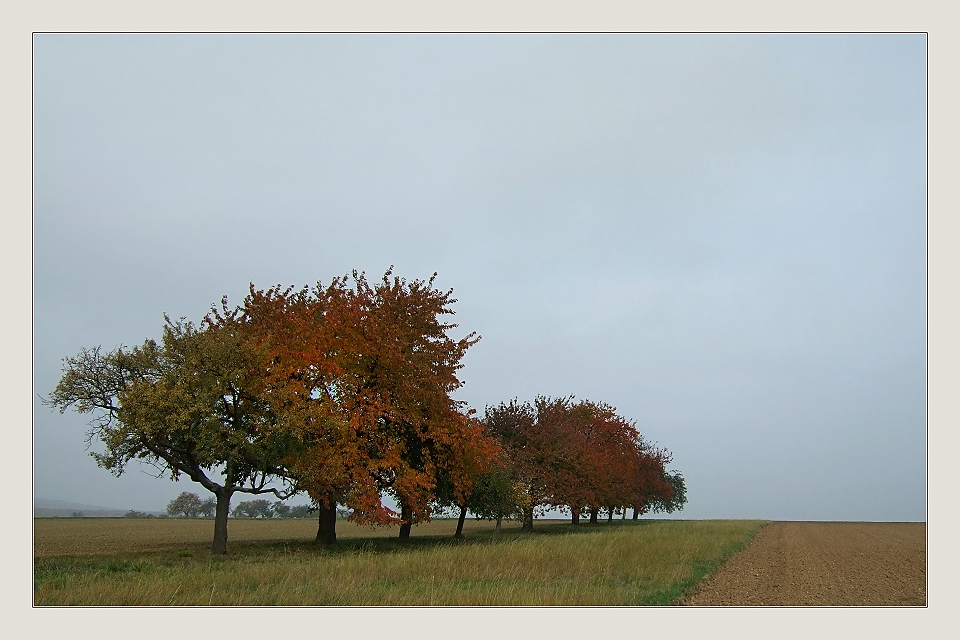 Ruhiges Herbstwetter...
