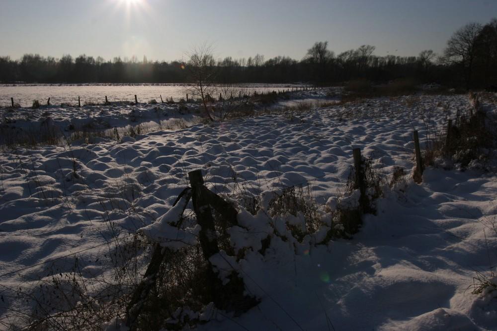 Ruhrauen im Winter