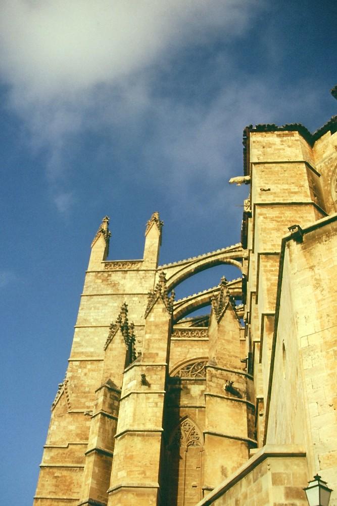 Ruine an der Dordogne