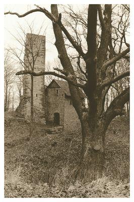 Ruine Boyneburg