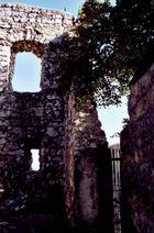Ruine Burg Falkenstein