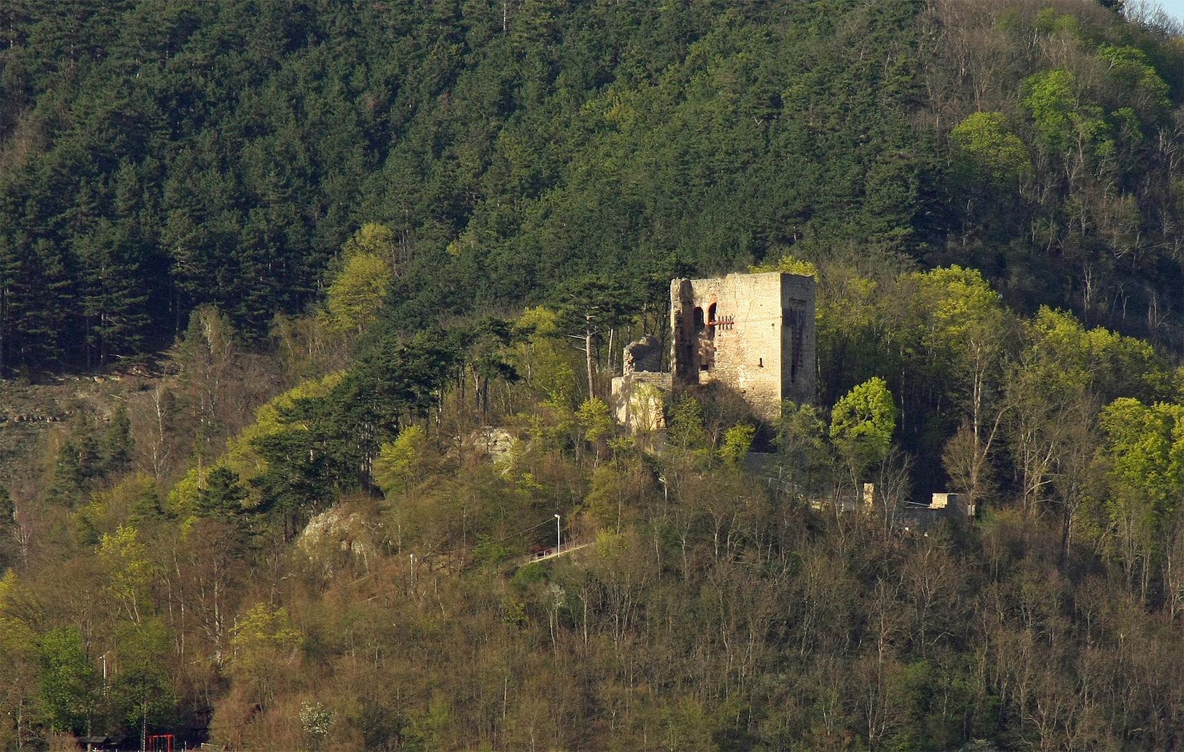 Ruine der Lobdeburg