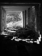 Ruine der Ziegelei (Papendorf)