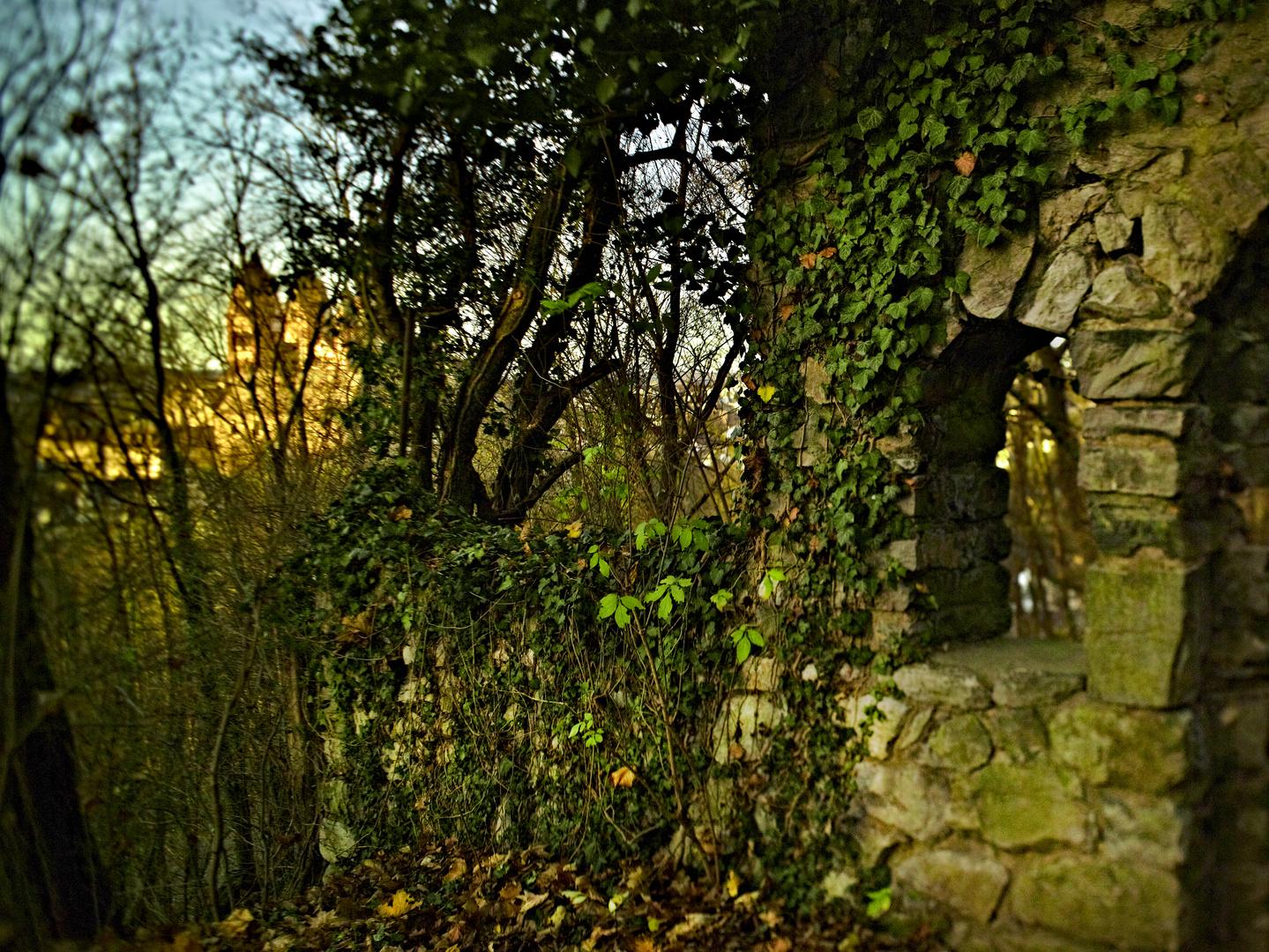 Ruine eines kleinen Klosters mit Blick auf den Dom zu Limburg