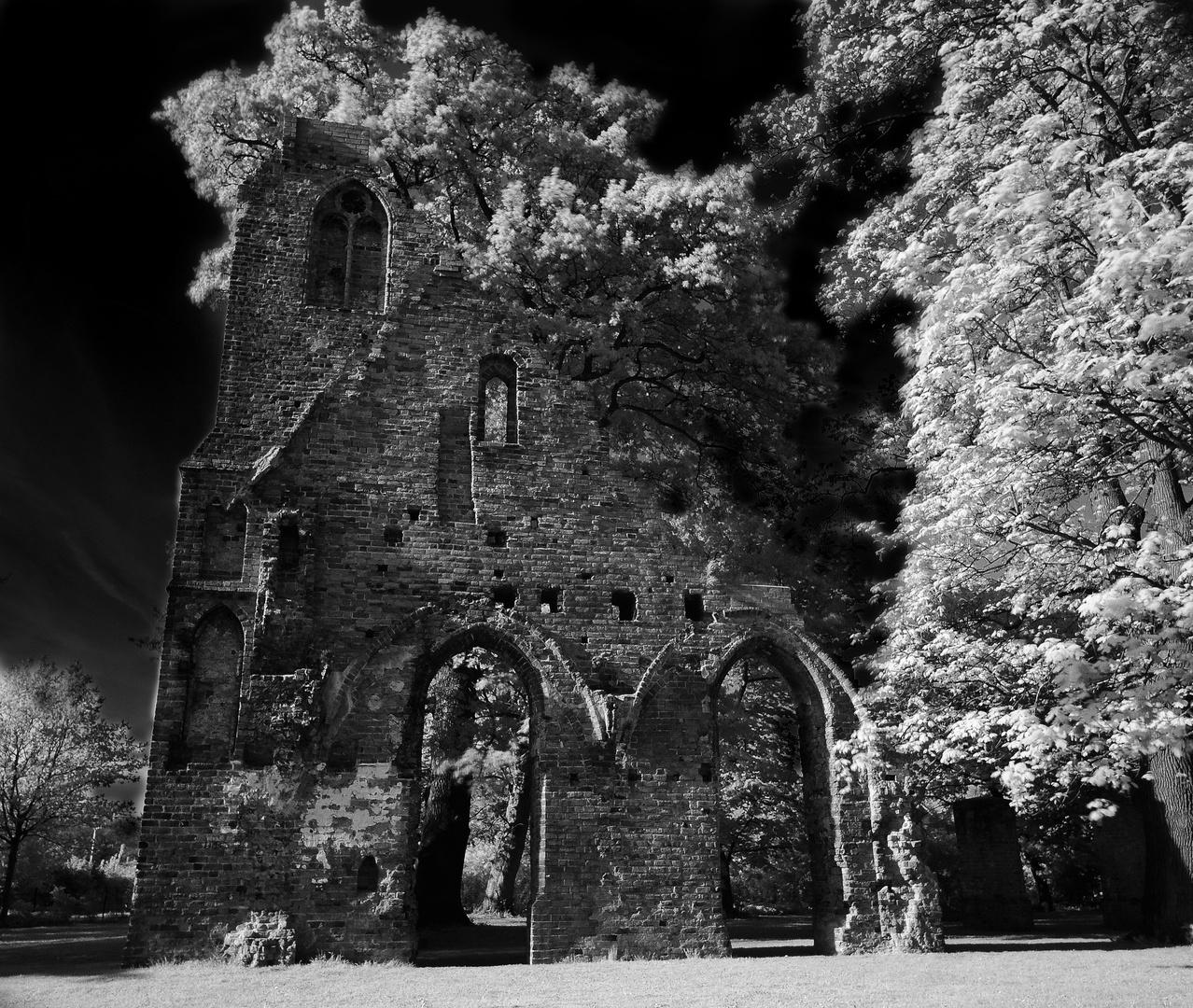 Ruine Eldena