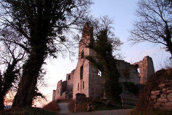 Ruine Homburg II