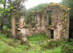 Ruine in Südfrankreich (1)
