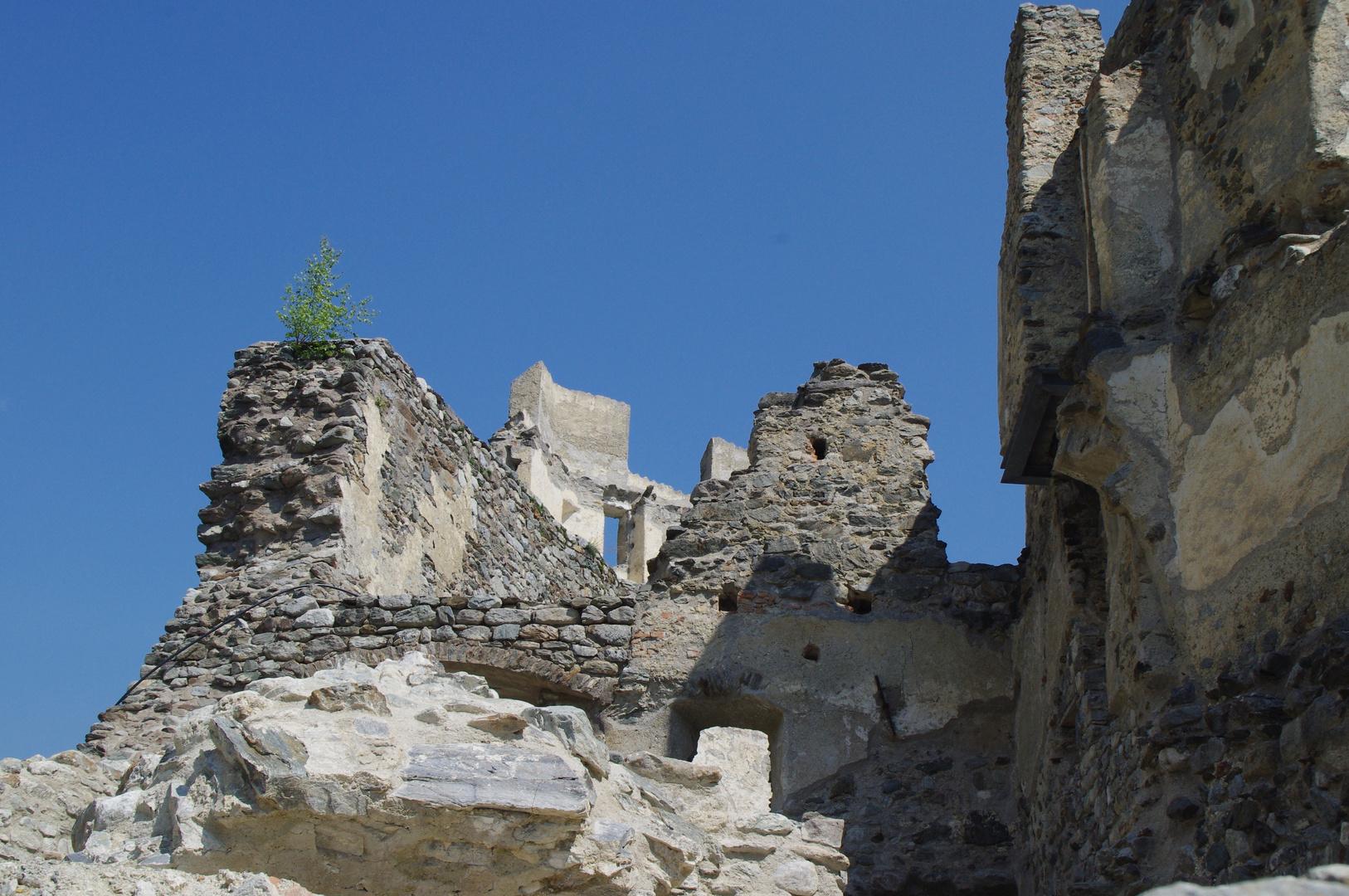 Ruine Lichtenberg 4