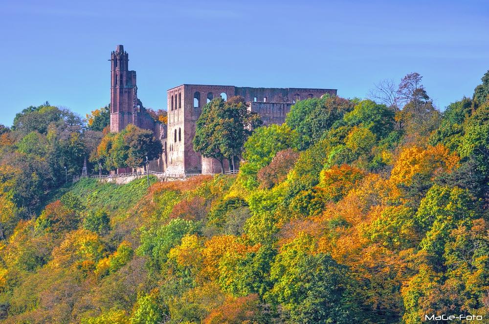 Ruine Limburg im Herbstmantel